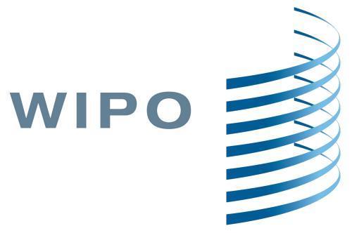 首超美成最大专利申请国 WIPO:中国的成功归功于这项战略