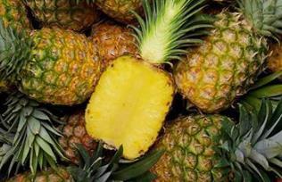 下月起,大陆暂停进口台湾菠萝