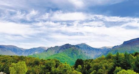 陕西这样开展义务植树——40年 4亿人次 年均6000万株