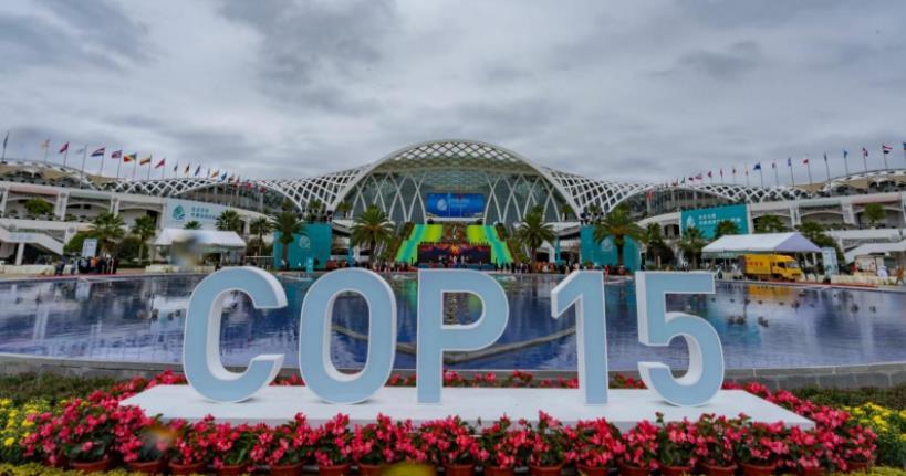 COP15是一个什么会议?