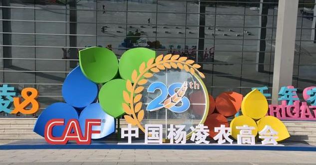 第28届杨凌农高会国际交流合作成果丰富
